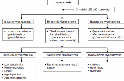 the cases and diagnosis of cognition syndrome and confusion ataxia syndrome When persistent learning and memory deficits are present in patients with wernicke encephalopathy (a clinical triad that classically, but not always, consists of confusion, ataxia, and nystagmus [or ophthalmoplegia]), the symptom complex is often called wernicke-korsakoff syndrome clinically, this term is.